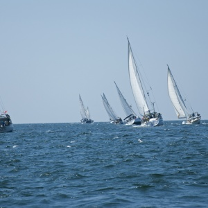 Sailfest - The most rewarding thing I have done as a cruiser